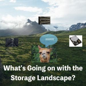 Image of a confused llama and a landscape behind it surrounded by pictures of storage technologies around it